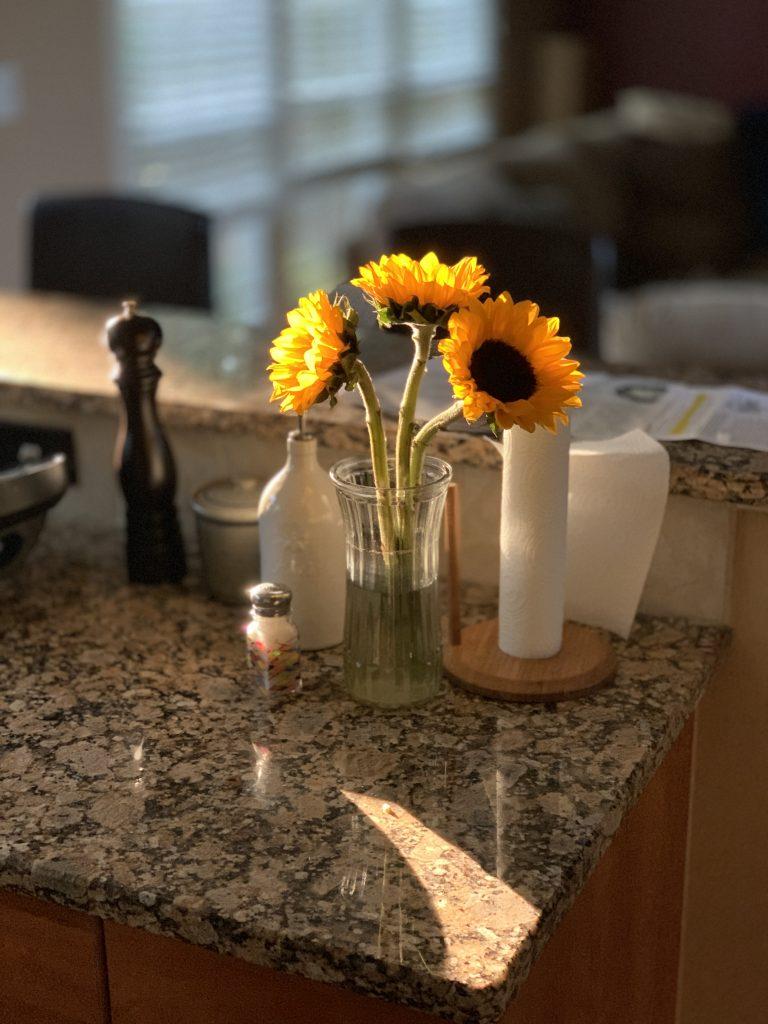 Morning sun on flowers